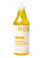 Шампунь для окрашенных волос COCO CHOCO REGULAR 500мл: фото